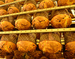 syn-panettone-fase11-1